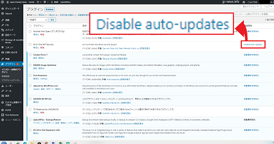 Disabele auto-updates